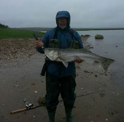 dan richards with maine striper