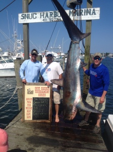 thresher snug harbor shark tourney
